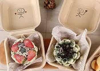 Embalagem lunch box sp